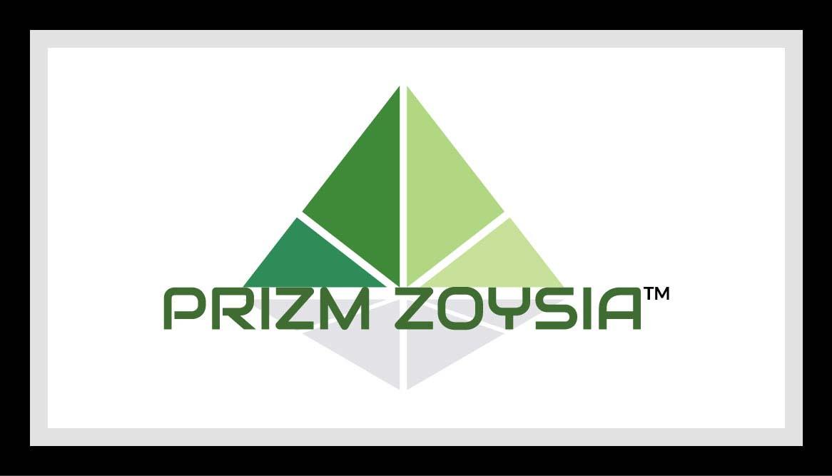 Prizm Zoysia