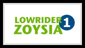 Lowrider1 Zoysia